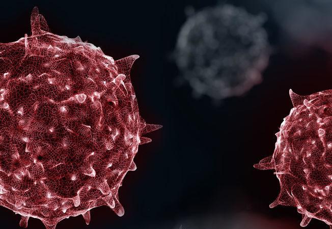 Der Coronavirus aus einer islamischen Perspektive